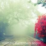 blur-branches-daylight-355296-2